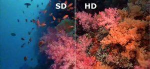 تفاوت sd و hd